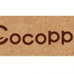 CocoPPAの売上は四半期で1億円程度?:ユナイテッド2013/1Q決算レポート