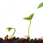 CAVシードジェネレーターファンド16の注目事業分野の魅力を検証