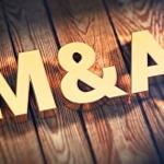 実は半分がメディア関連企業:2016年スタートアップ関連M&A24社